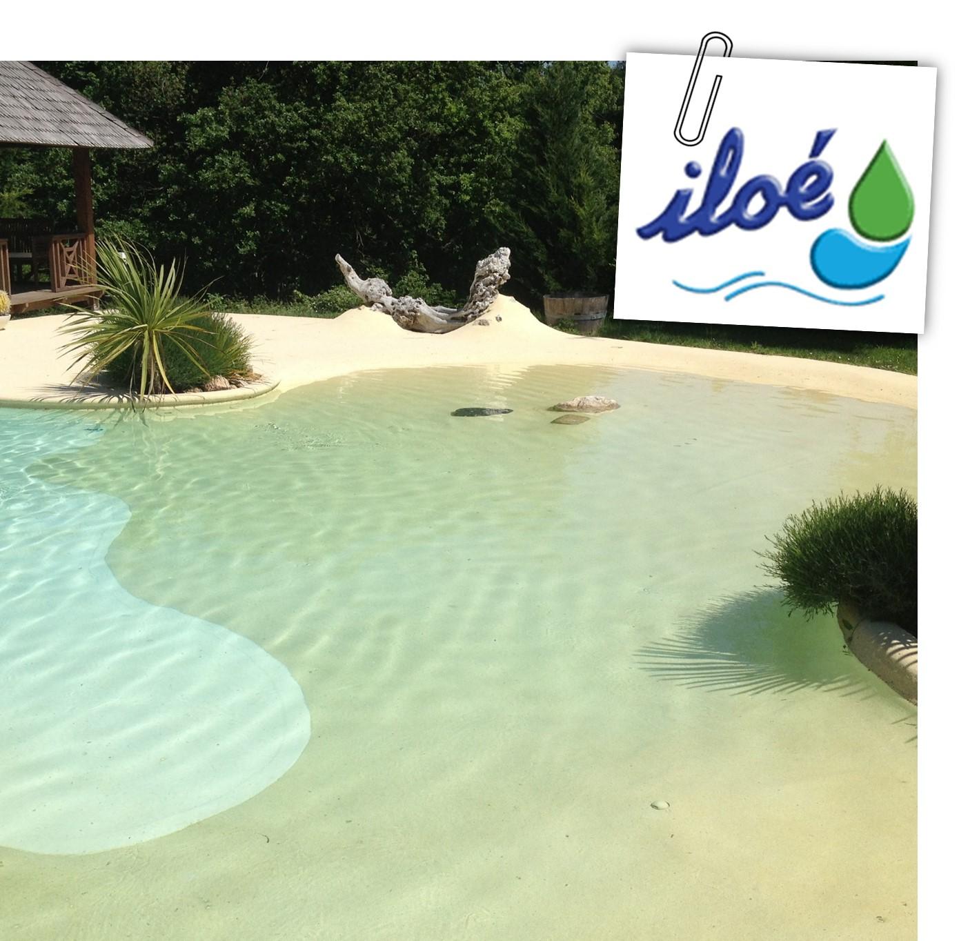Vert services lorette 42 paysagiste jardin piscine for Piscine plage immergee